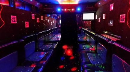 Party bus hire Middlesbrough. Party bus Hire Hartlepool. Party bus hire Durham. www.partyinabus.co.uk